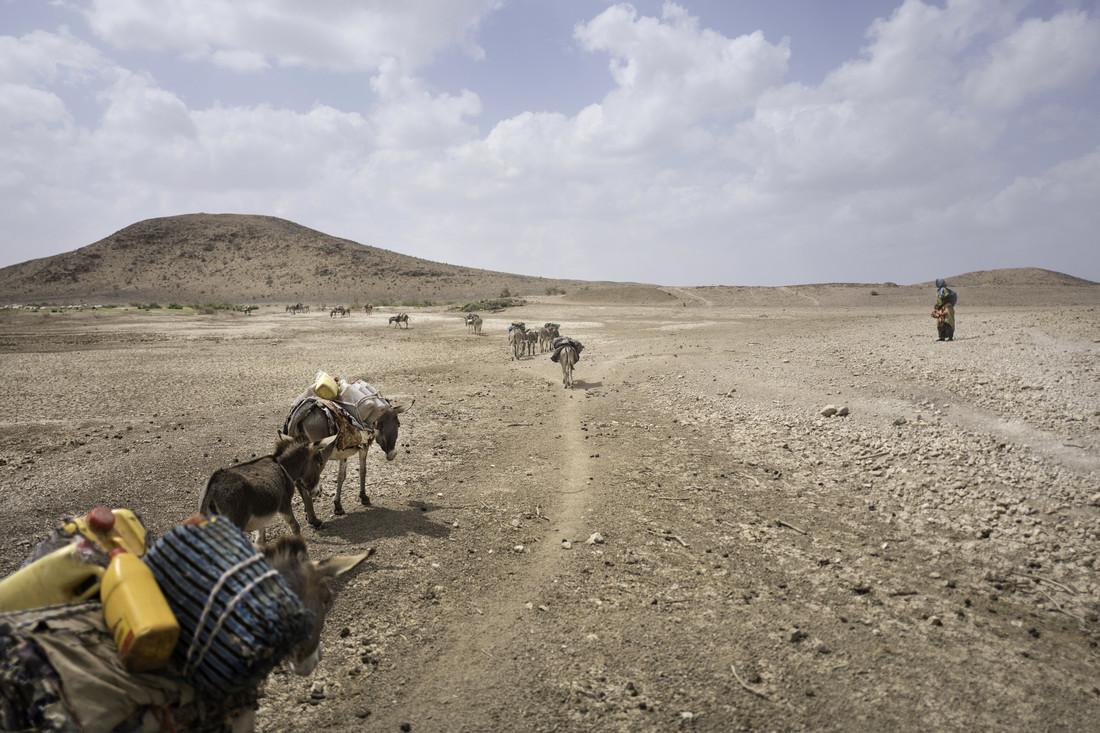Mahamud part régulièrement avec son bétail pour trouver des pâturages et peut être absent pendant des mois.