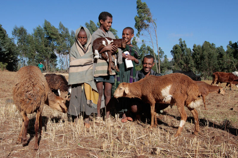 A goat farmer and his children, Ethiopia