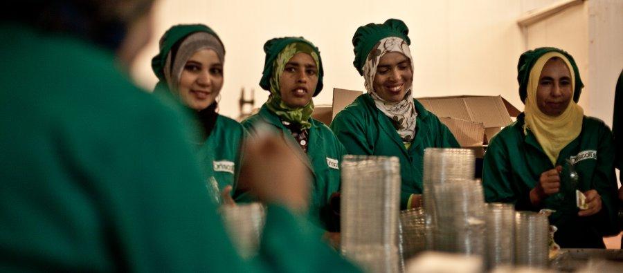 Femmes ouvrières dans une usine de fruits rouges.