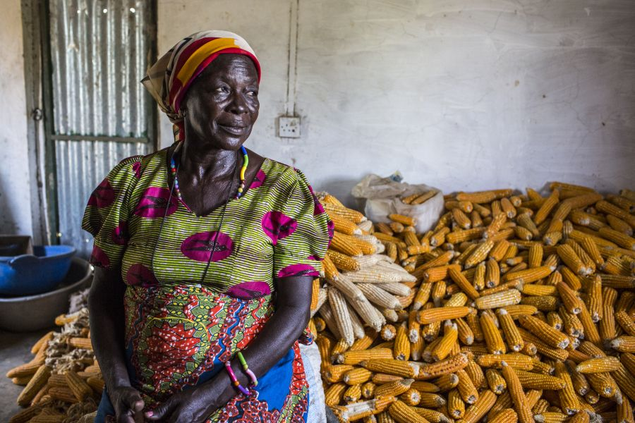 By working together, women farmers in northern Ghana are fighting food shortages during the long hunger season.