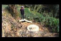 Changement climatique et pauvreté en Chine : une approche multidimensionnelle
