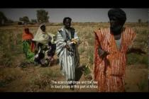 West Africa Food Crisis: Baaba Maal visits drought-stricken Mauritania