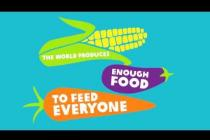 Food & You part 1: An introduction to the broken food system