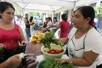 Deysi Román at her stall in the municipal market. Photo: Wilton Castillo/Oxfam