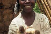 Trabajo en medios de vida sostenibles en la RDC. Foto: Caroline Gluck/Oxfam
