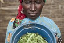 El alza de los alimentos en 2012. Foto: Oxfam