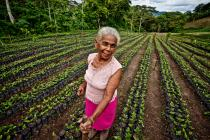 Achieving gender equality in land ownership would empower women and give them greater influence over the way that land is used. In the picture: Luz Evelia Godines Solano, a coffee farmer from Nicaragua.