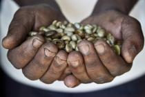 Hands full of seeds - Finance for Development Conference. Photo: Oxfam