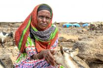 En Ethiopie, le gouvernement estime que 10,2 millions de personnes auront besoin d'aide humanitaire en 2016.
