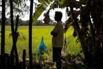 APECO land grab in the Philippines. Photo: Simon Rawles/Oxfam