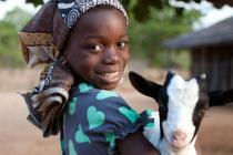 An Oxfam goat is a great gift. Sourced locally, they're fit, healthy and ready to supply a family with milk to drink or sell.