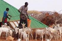 Abdi Ahmed Jamaa and his son collecting water for their animals from a rehabilitated barkad. Photo by TARDO/Oxfam