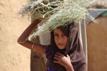 Aisha is an IDP from Haradh, living with her family in Borman village in Abs district – Hajjah.