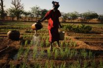 Woman in Mali