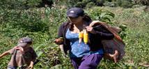 María Inés es una joven campesina de Paraguay, hoy en peligro de extinción. Foto. Luís Vives / Oxfam