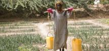 A woman carries water through her vegetable garden in Niger