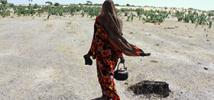 "Successive droughts in Chad""s Bahr el Gazel region have reduced food and pasture. Climate change is set to make survival even more difficult.Photo: Ella Dickinson/Oxfam"