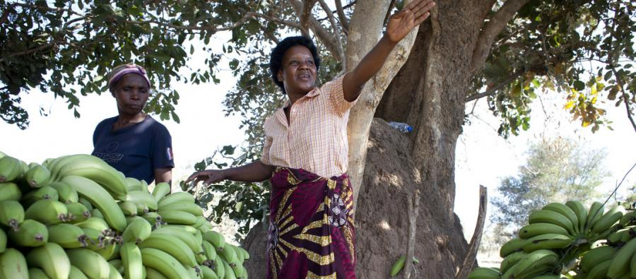Faith with her banana harvest in Chiawa, Zambia