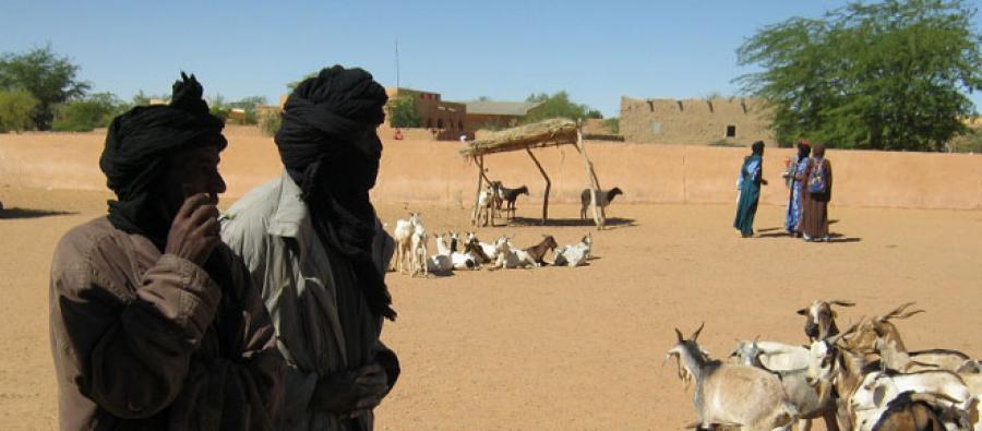 Eleveurs de la région de Gao, Mali. Photo : Oxfam