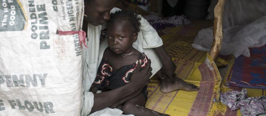Conflict in the Lake Chad Basin is pushing communities into dangerous levels of food insecurity and malnutrition, particularly among children.