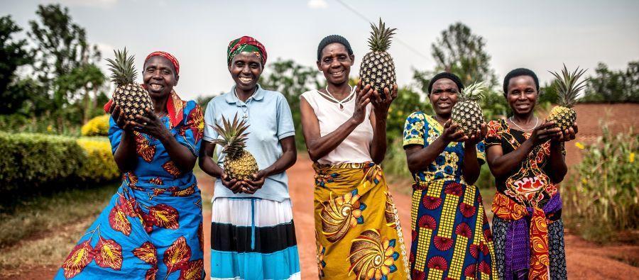 Les femmes membres de la coopérative Tuzamurane ont vu une nette amélioration de leurs revenus et peuvent désormais envoyer leurs enfants à l'école, payer les frais médicaux et acheter des terres.
