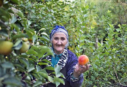 armeniapp